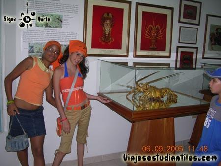 http://viajesestudiantiles.com/site/images/servicios/photobox-margarita-primaria/DSCN9585.jpg