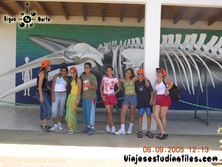 http://viajesestudiantiles.com/site/images/servicios/photobox-margarita-primaria/DSCN9610.jpg