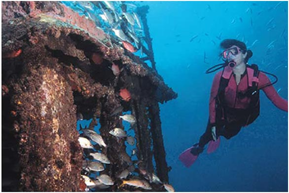 http://viajesestudiantiles.com/site/images/servicios/photobox-puntacana/diving.jpg